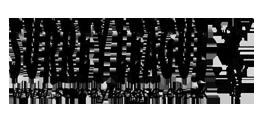 _logo3